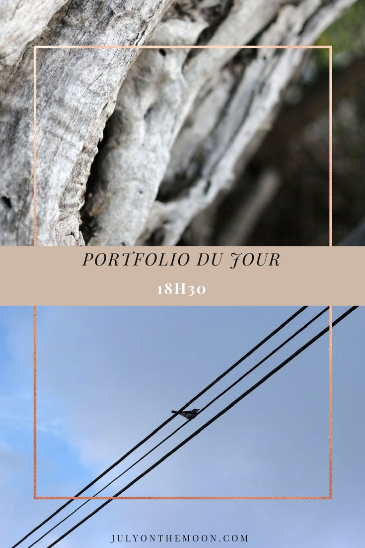 blog photographie portfolio nature crepuscule