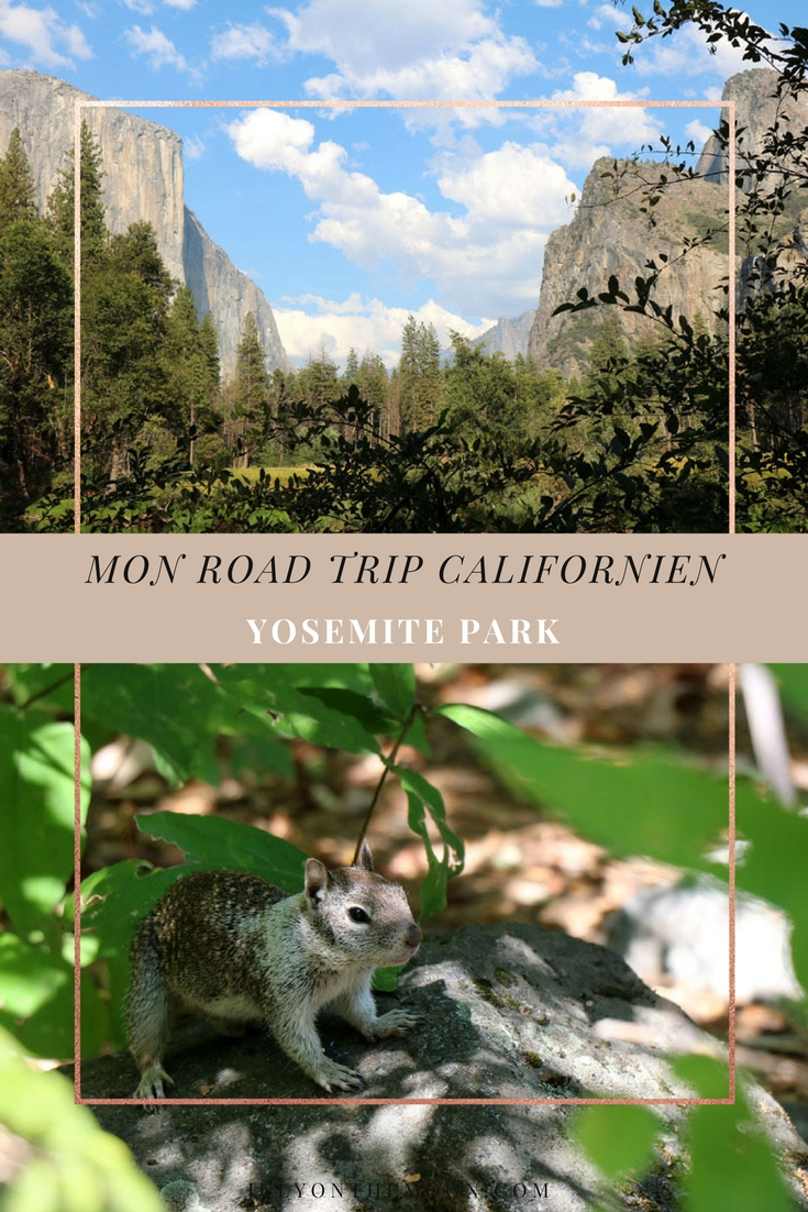 Blog Photographie Voyage USA Californie Yosemite